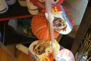 La Bande à Toutou - Accessoires pour chiens - Jouets
